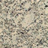 Sahara Beige Granite For Monuments Tombstones