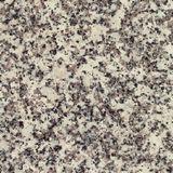Sahara Beige Granite For Online Gravestone