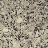 Sahara Beige Granite For Online Headstone