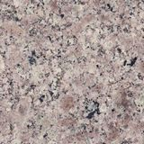 Autumn Brown Granite For Sculpture Monuments
