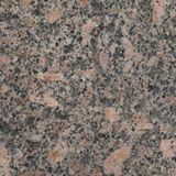 Autumn Brown Granite For Statues And Monuments