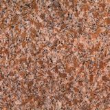 Multicolor Red Granite For Designs  For Tombstones